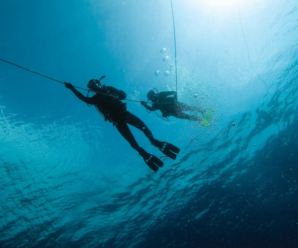 PADI Multilevel Diver