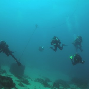 Divers in Tarifa