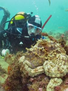 Liam & octopus